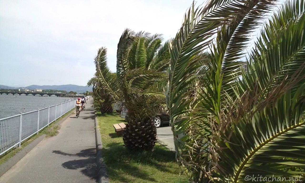 風の浜名湖