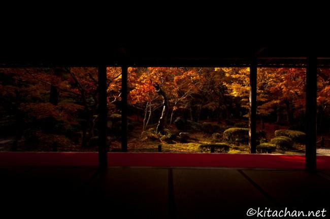 [Photolog] 2012年11月 京都の紅葉