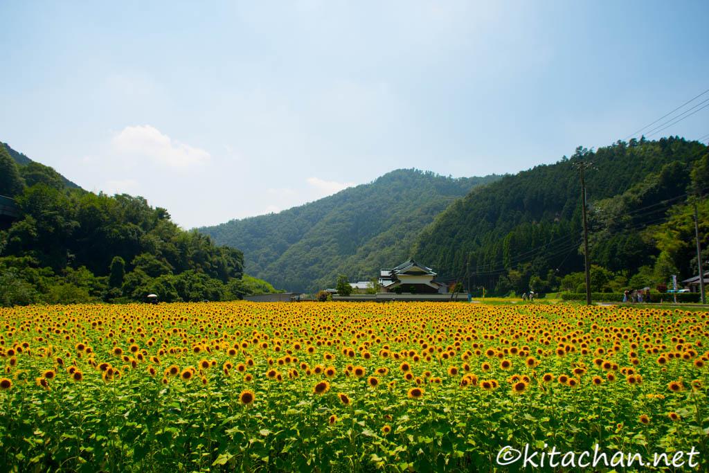 佐用町 – KITACHAN.NET
