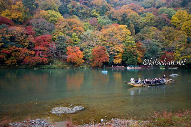 嵐山公園 亀山地区